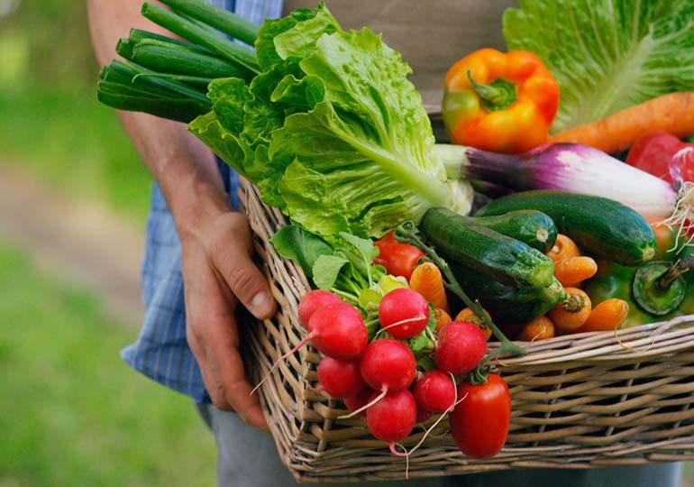 Alimentos Orgânicos: Estes São Os Alimentos Que A Sua Saúde Precisa