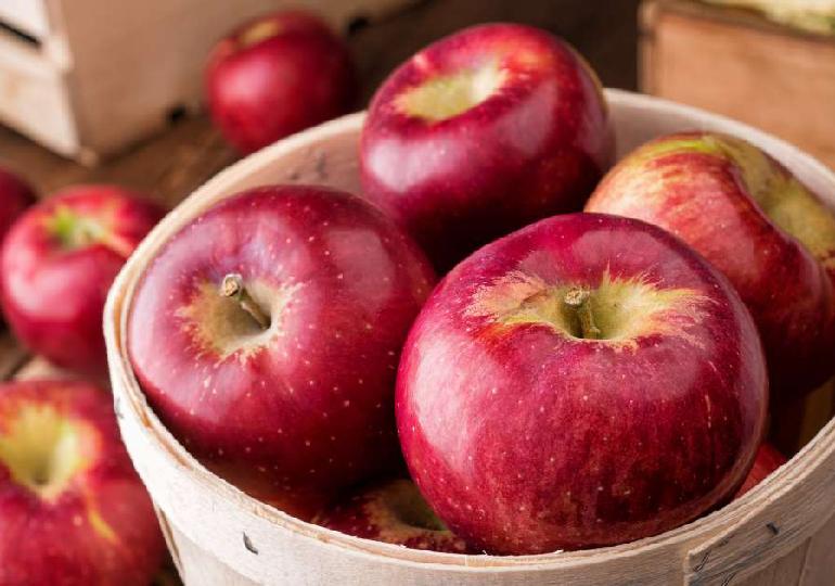 apple day corretamente