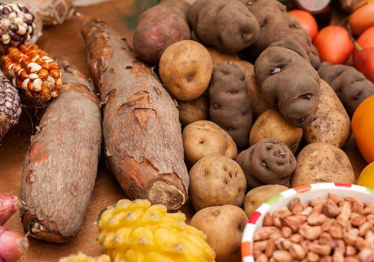 Alimentos Proibidos na Dieta Paleo