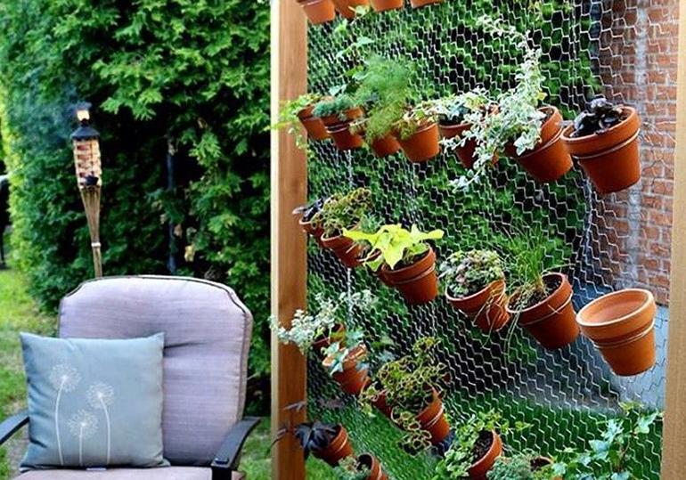 """Jardim suspenso: Aproveitando as paredes para ter sua """"mini selva"""""""